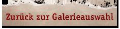 zurück zur Galerieauswahl
